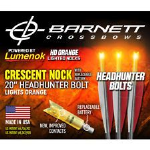 "Burt Coyote Barnett 20"" Bolts With Luminok Nocks (3 Pack) (1)"